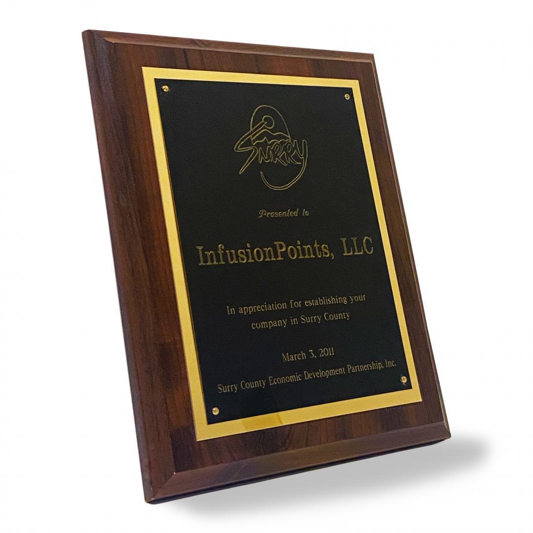 2011 Surry County Economic Development Partnership Inc.