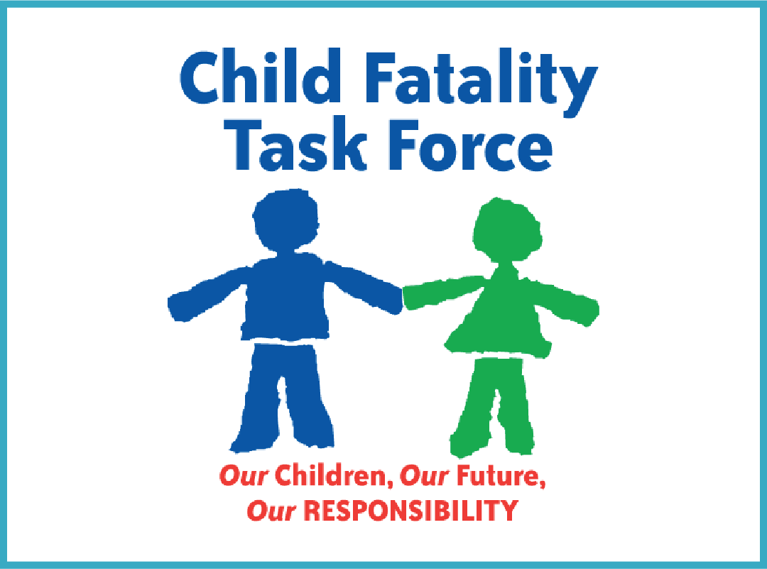 Child Fatality Prevention Team